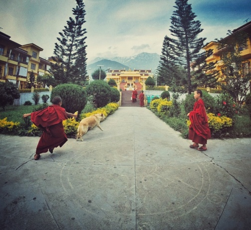 Lamas at play in Ggyuto Monastery, Sidhbari