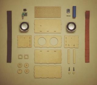 Sonic Architect: Stevie Ray Vaughan Lasercut