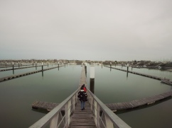 Inspecting the Dock at Nieuwpoort